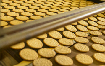 Biscuits and Cookies Industry in India 2015-19